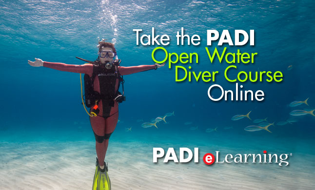 PADI Open Water Diver Online Class