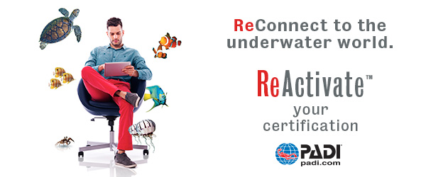 ReActivate your Certification