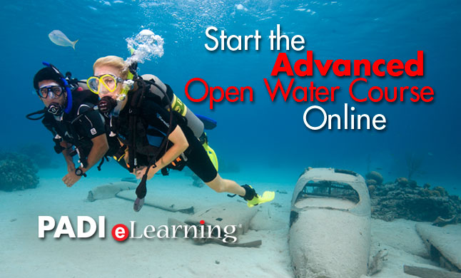 PADI Advanced Open Water Diver Class Online